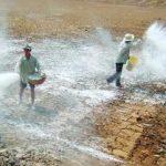 Những lưu ý khi bón vôi đối với đất và cây trồng